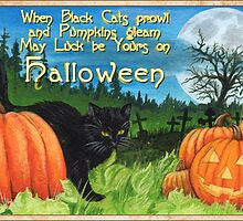 When Black Cats prowl on Halloween by Cleave
