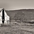 sepia barn by A.R. Williams