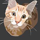 Kitten by stinaq