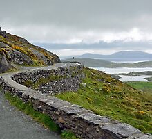 Ring of Kerry - Ireland by Arie Koene