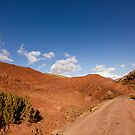 Atlas Mountains, Morocco by Miguel De Freitas