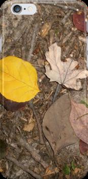 autumn 24 by arteology