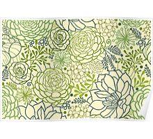 Succulent garden line art pattern Poster