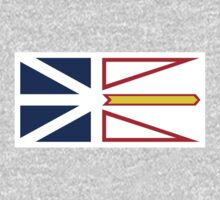 Newfoundland and Labrador Flag by cadellin