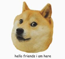 hello friends i am here shibe doge by catfantastic