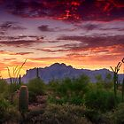 A Superstition Sunrise  by Saija  Lehtonen
