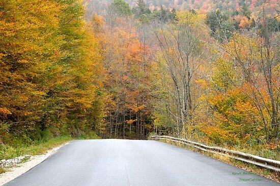 October Drive by DreamCatcher/ Kyrah Barbette L Hale