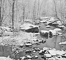 Snowy Day At The Creek by MotherNature2