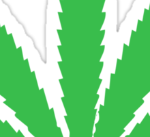 Pot Leaf Sticker