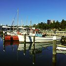 The Boats at Geelong by dozzam