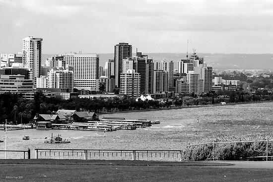 Perth City from Kings Park, Western Australia by Elaine Teague