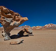 famous Arbol de Piedra rock like stone tree by travel4pictures