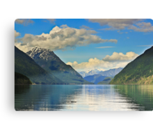 Golden ears Canvas Print
