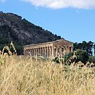 Temple Of Artemis - Segesta by Francis Drake