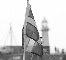 The flag of Kernow by melbertmole