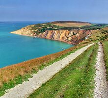 The Track To Alum Bay - I.O.W. by Colin J Williams Photography