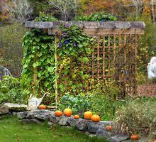 Autumn in Washington, NH by Monica M. Scanlan