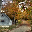 Faxon Hill Road in Autumn by Monica M. Scanlan