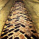 Strip of Brick by pat gamwell