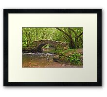 Hisley Packhorse Bridge Dartmoor Framed Print