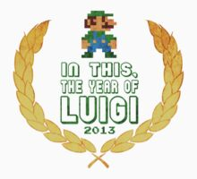 In This, The Year of Luigi by nyankokimi