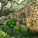 Garden Wall at The Alamo - A symbol of struggle for freedom by TonyCrehan
