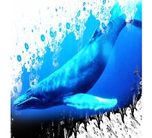 whales by arteology