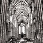 Worcester Cathedral in Mono. by Maybrick
