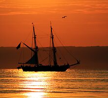 Tall Ship Royalist by Wrayzo