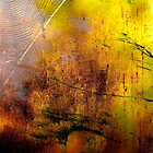 Early Autumn Web Abstract .. by Mike  Waldron