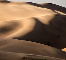 Dune - Great Sand Dunes National Park, Colorado by Jason Heritage