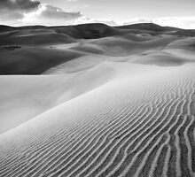 Sand Pattern - Great Sand Dunes National Park, Colorado by Jason Heritage