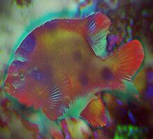 4846 Fish by AnkhaDesh