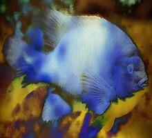 4849 Fish by AnkhaDesh