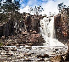 Nigretta Falls #1 by Roger Neal