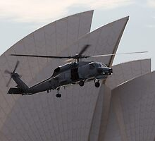 SeaHawk at the Opera by diggle