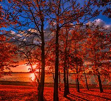 Autumn Perfection 2852_13 by Ian McGregor