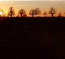 Dyrham Park Sunset. by Alyson Fennell
