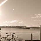 bike and bridge by designseventy