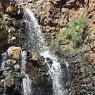 Morialta Falls by sharon wingard