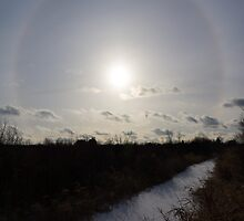 Sun Halo - a Beautiful Optical Phenomenon by Georgia Mizuleva