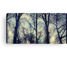 winter in Berlin Canvas Print