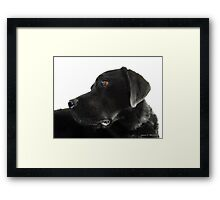 Did Someone Say Biscuit? Framed Print