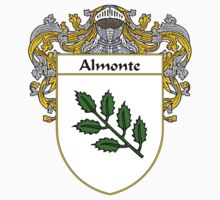 Almonte Coat of Arms/Family Crest Kids Clothes