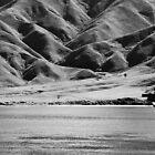 Okukari Bay by Duncan Cunningham