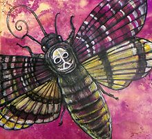The Sphinx Moth by Lynnette Shelley