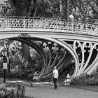 Crossing A Bridge by W. Lotus