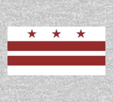 Washington DC Flag by cadellin