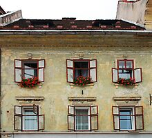 Historic Building in Skofja Loka 1 by jojobob