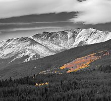 Rocky Mountain Independence  by Bo Insogna